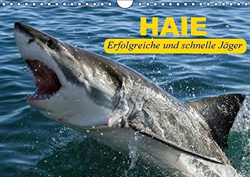 9783664405039: Haie. Erfolgreiche und schnelle Jäger (Wandkalender 2016 DIN A4 quer)