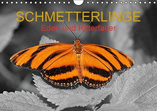 9783664407217: Schmetterlinge - Edel- und Ritterfalter (Wandkalender 2016 DIN A4 quer): Wunderschön kolorierte Falter aus verschiedenen Kontinenten unserer Erde (Monatskalender, 14 Seiten)