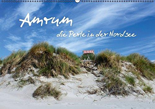 9783664425389: Amrum, die Perle in der Nordsee (Wandkalender 2016 DIN A2 quer): Lassen Sie sich verzaubern von der naturbelassenen Dünenlandschaft Amrums. (Monatskalender, 14 Seiten)