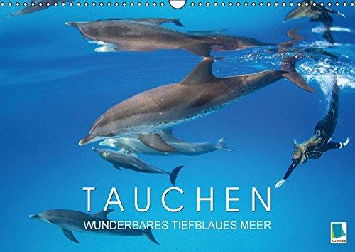 9783664442737: Tauchen: Wunderbares tiefblaues Meer - Wandkalender 2016