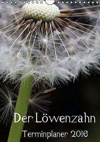 9783664447534: Der L�wenzahn-Terminplaner (Wandkalender 2016 DIN A4 hoch): Kleine Kunstwerke in gelb und wei� (Planer, 14 Seiten)