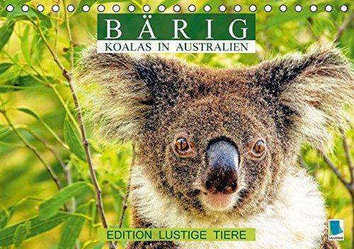 9783664467709: Bärig: Koalas in Australien - Edition lustige Tiere (Tischkalender 2016 DIN A5 quer): Koalas: Lebende Teddybären (Monatskalender, 14 Seiten)