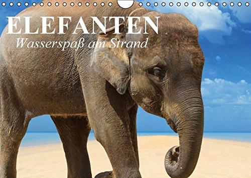 9783664470563: Elefanten - Wasserspaß am Strand (Wandkalender 2016 DIN A4 quer): Süße Elefanten beim Planschen und Spielen am Strand (Geburtstagskalender, 14 Seiten)