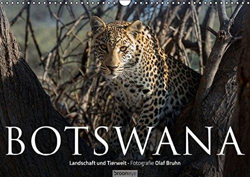 9783664479504: Botswana - Landschaft und Tierwelt (Wandkalender 2016 DIN A3 quer)