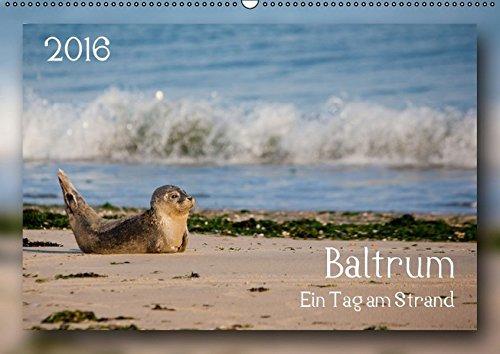 9783664482207: Baltrum - Ein Tag am Strand - Wandkalender 2016