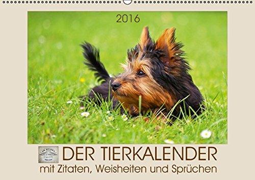 9783664500352: Der Tierkalender mit Zitaten, Weisheiten und Sprüchen (Wandkalender 2016 DIN A2 quer): Emotionale Tierfotografien begleiten durch das Jahr. (Monatskalender, 14 Seiten)