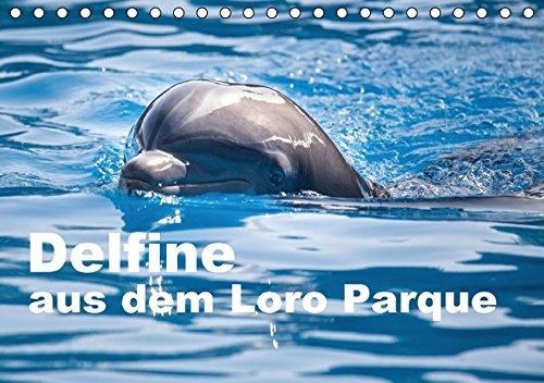 9783664511167: Delfine aus dem Loro Parque (Tischkalender 2016 DIN A5 quer): Delfine als Botschafter der Meere (Monatskalender, 14 Seiten)