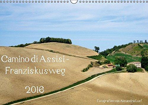 9783664537723: Camino di Assisi - FranziskuswegAT-Version (Wandkalender 2016 DIN A3 quer): Auf den Spuren des Franz von Assisi am Pilgerweg von Dovadola nach Rom (Monatskalender, 14 Seiten)