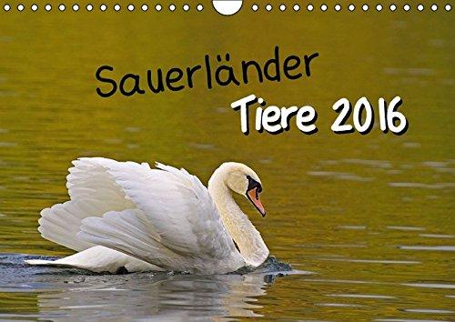 9783664547531: Sauerländer Tiere (Wandkalender 2016 DIN A4 quer)