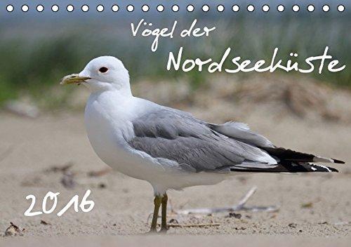 9783664583188: Vögel der Nordseeküste (Tischkalender 2016 DIN A5 quer): Faszinierende Nahaufnahmen heimischer Küstenvögel (Monatskalender, 14 Seiten)