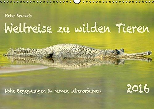 9783664611409: Weltreise zu wilden Tieren (Wandkalender 2016 DIN A3 quer): Nahe Begegnungen in fernen Lebensräumen (Monatskalender, 14 Seiten)