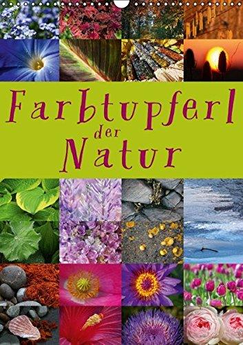 9783664621453: Farbtupferl der Natur (Wandkalender 2016 DIN A3 hoch): 24 wunderbare Farbtupferl der Natur (Monatskalender, 14 Seiten)