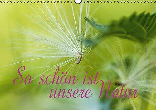 9783664661503: So schön ist unsere Natur (Wandkalender 2016 DIN A3 quer)