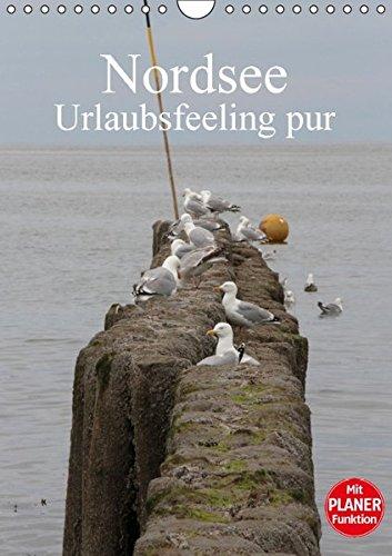 9783664705290: Nordsee / Urlaubsfeeling pur / Familienplaner (Wandkalender 2016 DIN A4 hoch): Traumhafte Bilder von der Nordseek�ste in Schleswig Holstein. (Familienplaner, 14 Seiten)
