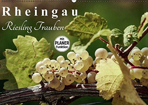 9783664712809: Rheingau - Riesling Trauben (Wandkalender 2016 DIN A2 quer): Impressionen von Riesling Trauben aus renommierten Weinlagen im Rheingau. (Geburtstagskalender, 14 Seiten)