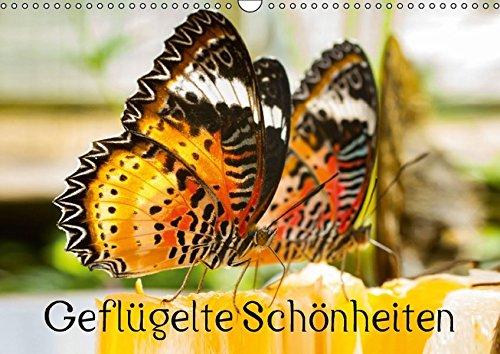 9783664826339: Geflügelte Schönheiten (Wandkalender 2017 DIN A3 quer): Tropische Schmetterlinge (Monatskalender, 14 Seiten)