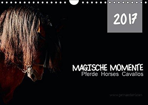 9783664842964: Magische Momente - Pferde Horses Caballos (Wandkalender 2017 DIN A4 quer): Die Magie der Pferde. Fotografien vor schwarzem Hintergrund (Monatskalender, 14 Seiten )