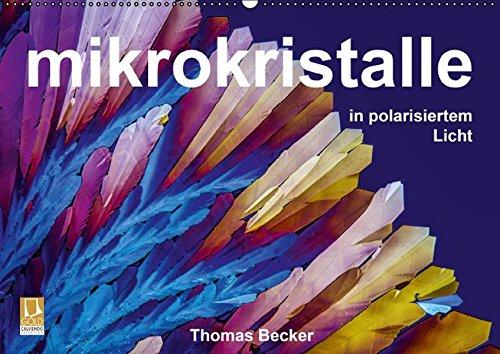 9783664849741: Mikrokristalle in polarisiertem Licht (Wandkalender 2017 DIN A2 quer): Das Universum der Mikrokristalle (Monatskalender, 14 Seiten )