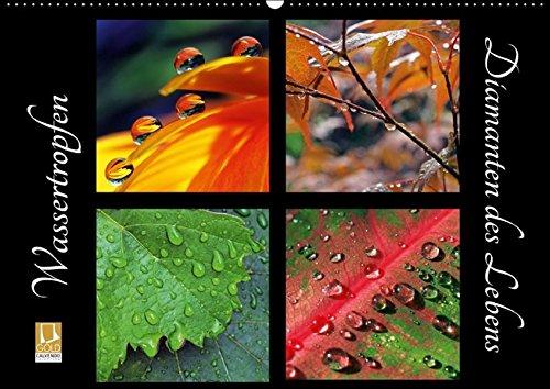 9783664850327: Wassertropfen - Diamanten des Lebens (Wandkalender 2017 DIN A2 quer): Wassertropfen, lupenrein auf Blüten und Blättern (Monatskalender, 14 Seiten)