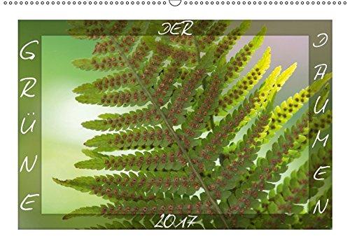 9783664910328: DER GRÜNE DAUMEN (Wandkalender 2017 DIN A2 quer): Schmuckkalender, mit 13 grünen Aufnahmen von einem Streifzug durch den Garten (Monatskalender, 14 Seiten)