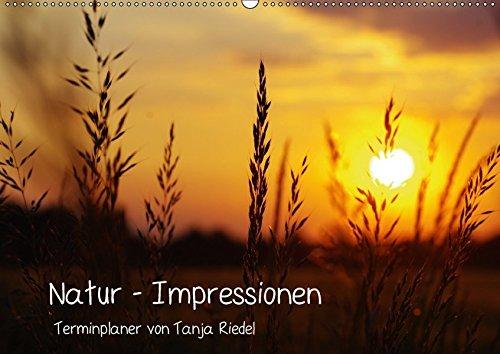 9783664911639: Natur - Impressionen Terminkalender von Tanja Riedel österreichische EditionAT-Version (Wandkalender 2017 DIN A2 quer): Bilder zum Entspannen und ... der Natur (Geburtstagskalender, 14 Seiten )