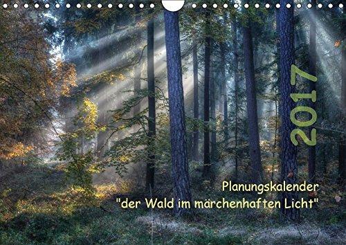 9783664991532: Planungskalender Märchenwald 2017 (Wandkalender 2017 DIN A4 quer): Der heimische Wald im besonderen Licht + Terminplanung (Geburtstagskalender, 14 Seiten )