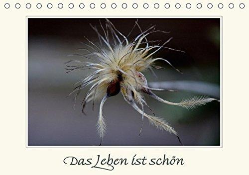 9783665016753: Das Leben ist schön (Tischkalender 2017 DIN A5 quer): Aphorismen und Naturbilder (Monatskalender, 14 Seiten )