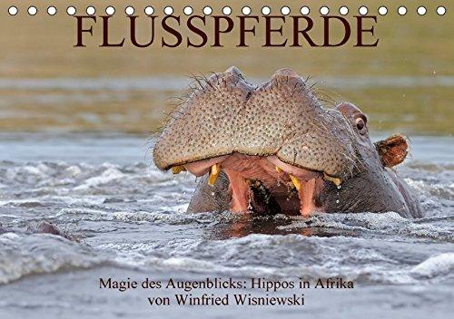 9783665020903: Flusspferde Magie des Augenblicks - Hippos in Afrika (Tischkalender 2017 DIN A5 quer): Eindrucksvolle Fotos von den afrikanischen Kolossen - Nilpferde ... Wisniewski (Monatskalender, 14 Seiten )