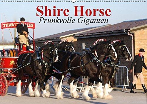 9783665028145: Shire Horse . Prunkvolle Giganten (Wandkalender 2017 DIN A2 quer): Die größten Pferde der Welt im Prunkgeschirr! (Monatskalender, 14 Seiten )