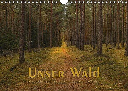 9783665034726: Unser Wald - Magische Sichten in norddeutsche Wälder (Wandkalender 2017 DIN A4 quer): Malerische Blicke in unseren Wald (Monatskalender, 14 Seiten )