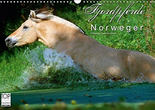 9783665039400: Fjordpferde - Norweger (Wandkalender 2017 DIN A3 quer): Kalender Fjordpferde/Norweger (Monatskalender, 14 Seiten) (CALVENDO Tiere)