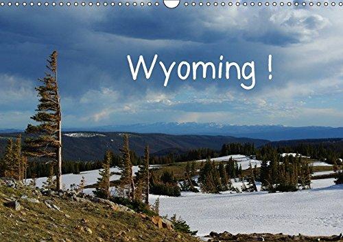9783665052188: Wyoming! / CH-Version (Wandkalender 2017 DIN A3 quer): Eine Reise durch Wyoming, Land der Cowboys (Monatskalender, 14 Seiten )