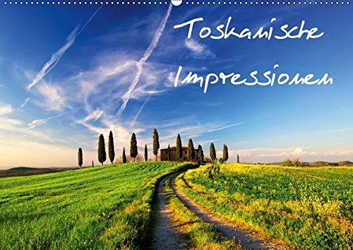 9783665056964: Toskanische Impressionen (Wandkalender 2017 DIN A2 quer): Traumhafte Impressionen aus der Toskana. (Monatskalender, 14 Seiten )