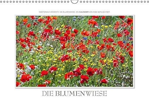 9783665084462: Emotionale Momente: Die Blumenwiese. / CH-Version (Wandkalender 2017 DIN A3 quer): Ingo Gerlach GDT hat auf der holländischen Insel Texel eine ... fotografiert. (Monatskalender, 14 Seiten )
