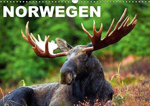 9783665095574: Norwegen (Wandkalender 2017 DIN A3 quer): Das Land der unberührten Natur und Fjorde (Monatskalender, 14 Seiten )