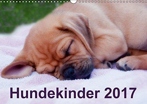 9783665106706: Hundekinder 2017 (Wandkalender 2017 DIN A3 quer): Ein Welpenkalender für alle Hundefreunde (Monatskalender, 14 Seiten )