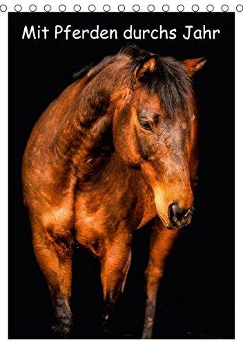 9783665124861: Mit Pferden durchs Jahr / Planer (Tischkalender 2017 DIN A5 hoch): Tolle Pferdebilder begleiten Sie durch das Jahr (Planer, 14 Seiten )