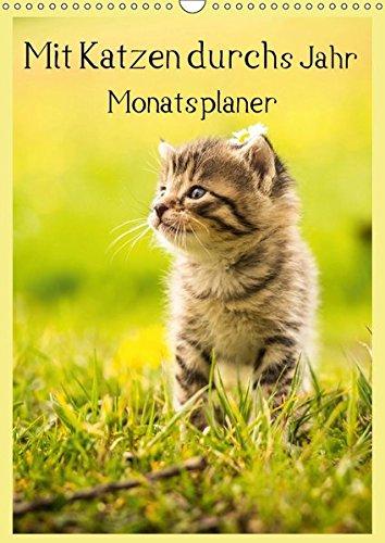 9783665127138: Mit Katzen durchs Jahr / Planer (Wandkalender 2017 DIN A3 hoch): Ein Terminplaner mit tollen Katzenmotiven (Planer, 14 Seiten )