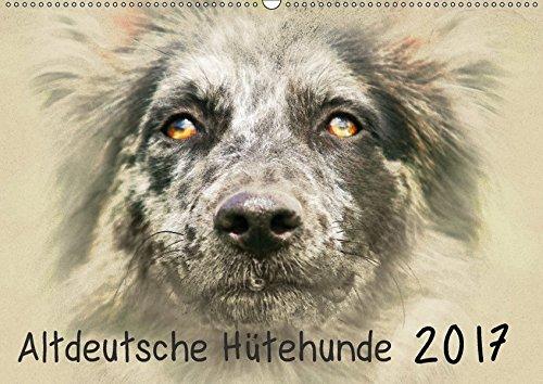 9783665128111: Altdeutsche Hütehunde 2017 (Wandkalender 2017 DIN A2 quer): Altdeutsche Hütehunde im kunstvollen Aquarell-Stil. Jedes Monatsmotiv gleicht einem kleinen Kunstwerk (Monatskalender, 14 Seiten )