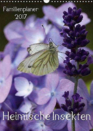 9783665130503: Heimische Insekten/Familienplaner (Wandkalender 2017 DIN A3 hoch): Nahaufnahmen von deutschen Gartenbewohnern (Familienplaner, 14 Seiten)