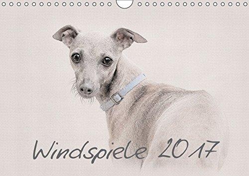 9783665134891: Windspiele 2017 (Wandkalender 2017 DIN A4 quer): Windspiele - Wunderschön gestalteter Kalender. Jedes Monatsmotiv gleicht einem kleinen Kunstwerk. (Monatskalender, 14 Seiten)
