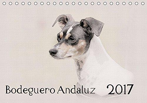 9783665136482: Bodeguero Andaluz 2017 (Tischkalender 2017 DIN A5 quer): Bodegueros - Wunderschön gestalteter Kalender. Jedes Monatsmotiv gleicht einem kleinen Kunstwerk. (Monatskalender, 14 Seiten )