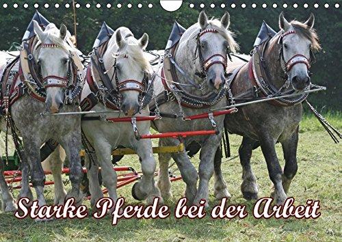 9783665145385: Starke Pferde bei der Arbeit (Wandkalender 2017 DIN A4 quer)