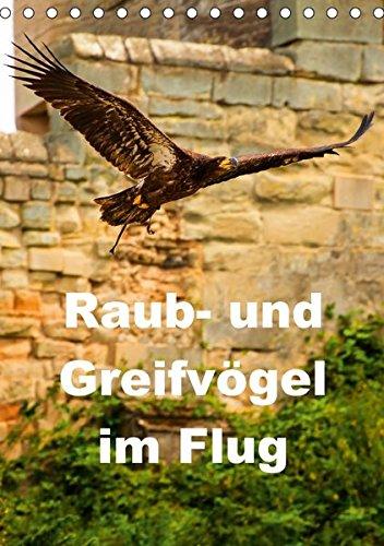 9783665150082: Raub- und Greifvögel im Flug (Tischkalender 2017 DIN A5 hoch): Faszinierende Raub- und Greifvögel in der Luft beobachtet (Planer, 14 Seiten )