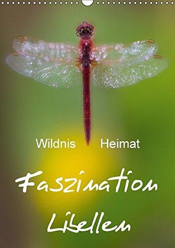 9783665165086: Faszination Libellen - Wildnis Heimat (Wandkalender 2017 DIN A3 hoch): Makrofotografie der Extraklasse (Monatskalender, 14 Seiten )