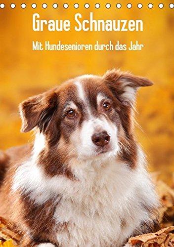 9783665166908: Graue Schnauzen - Mit Hundesenioren durch das Jahr (Tischkalender 2017 DIN A5 hoch): Zwölf eindrucksvolle Porträts von alten Hunden begleiten Sie durch das Jahr. (Monatskalender, 14 Seiten )