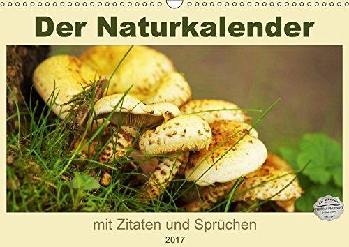 9783665180409: Der Naturkalender mit Zitaten und Sprüchen (Wandkalender 2017 DIN A3 quer): Fotografien aus der Natur und von Landschaften begleiten uns durch das Jahr. (Monatskalender, 14 Seiten )