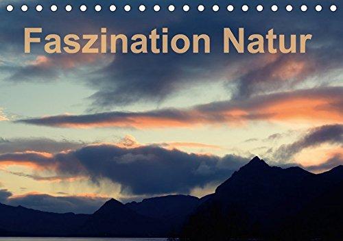 9783665208332: Fasziantion Natur (Tischkalender 2017 DIN A5 quer): Einmalig Ansichten der Natur (Monatskalender, 14 Seiten )