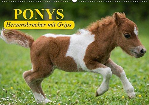 9783665213114: Ponys. Herzensbrecher mit Grips (Wandkalender 2017 DIN A2 quer): Süße Frechdachse mit Löwenherz (Geburtstagskalender, 14 Seiten)