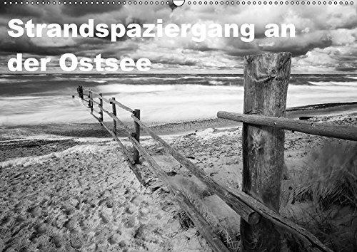 9783665233495 - Thomas Krebs: Strandspaziergang an der Ostsee (Wandkalender 2017 DIN A2 quer): Schwarzweiss-Aufnahmen entstanden am Strand von Darß und Rügen (Monatskalender, 14 Seiten ) - Book